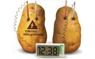 Как сделать батарейку из картошки?